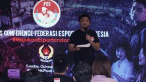 Federasi Esports Indonesia, Hadir bagi Ekosistem Esports Indonesia